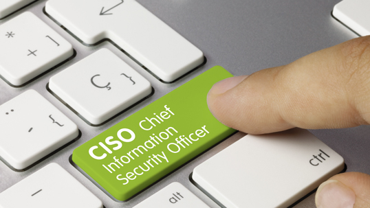 cyber security manager ciso